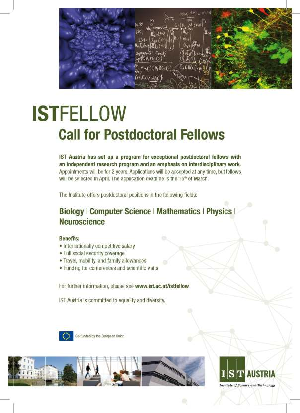 istfellow-flyer